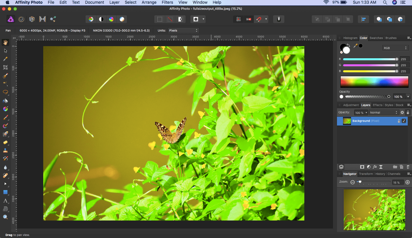 Affinity Photo: Straighten and Crop an Image