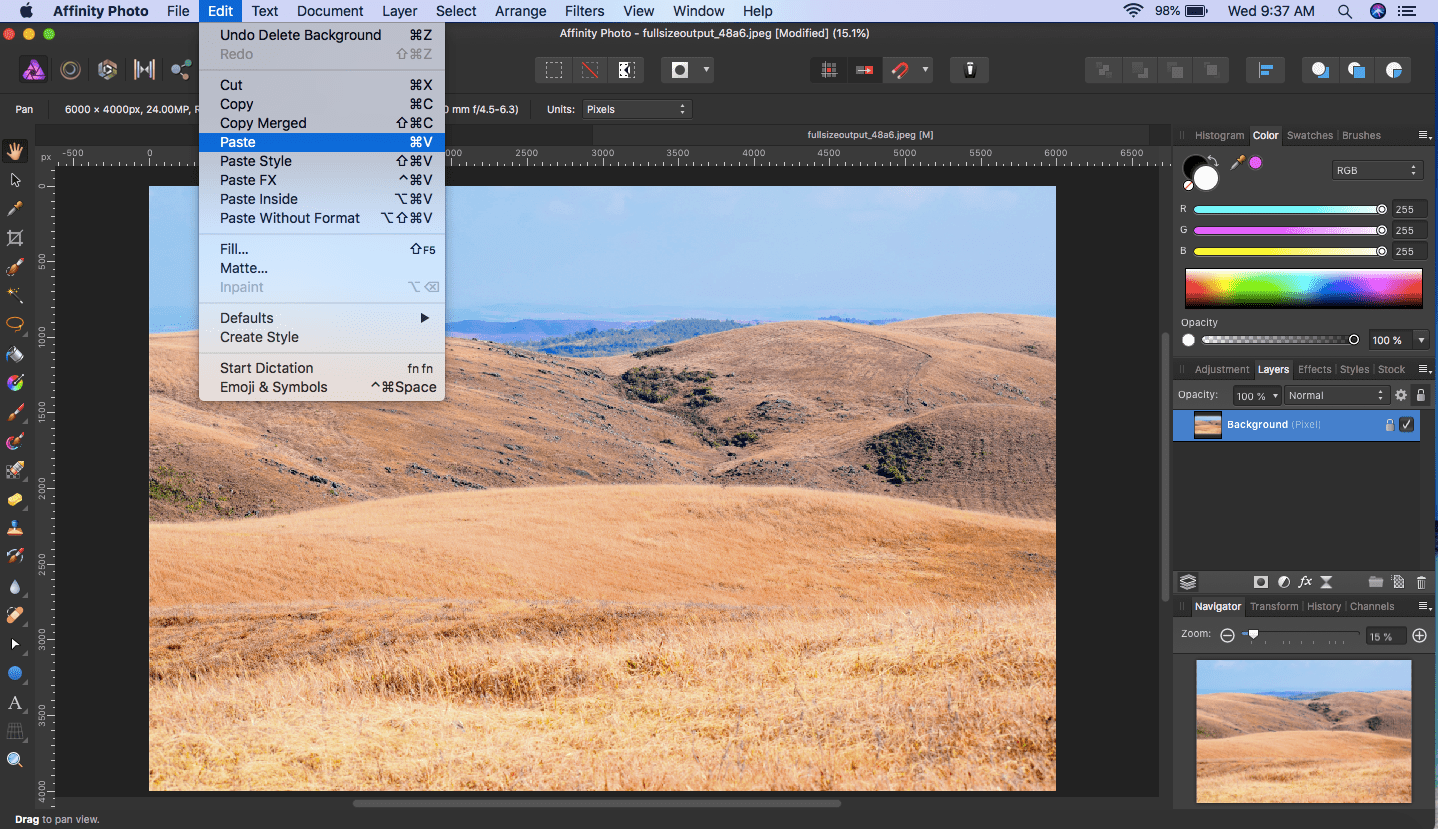 affinity photo selection paste