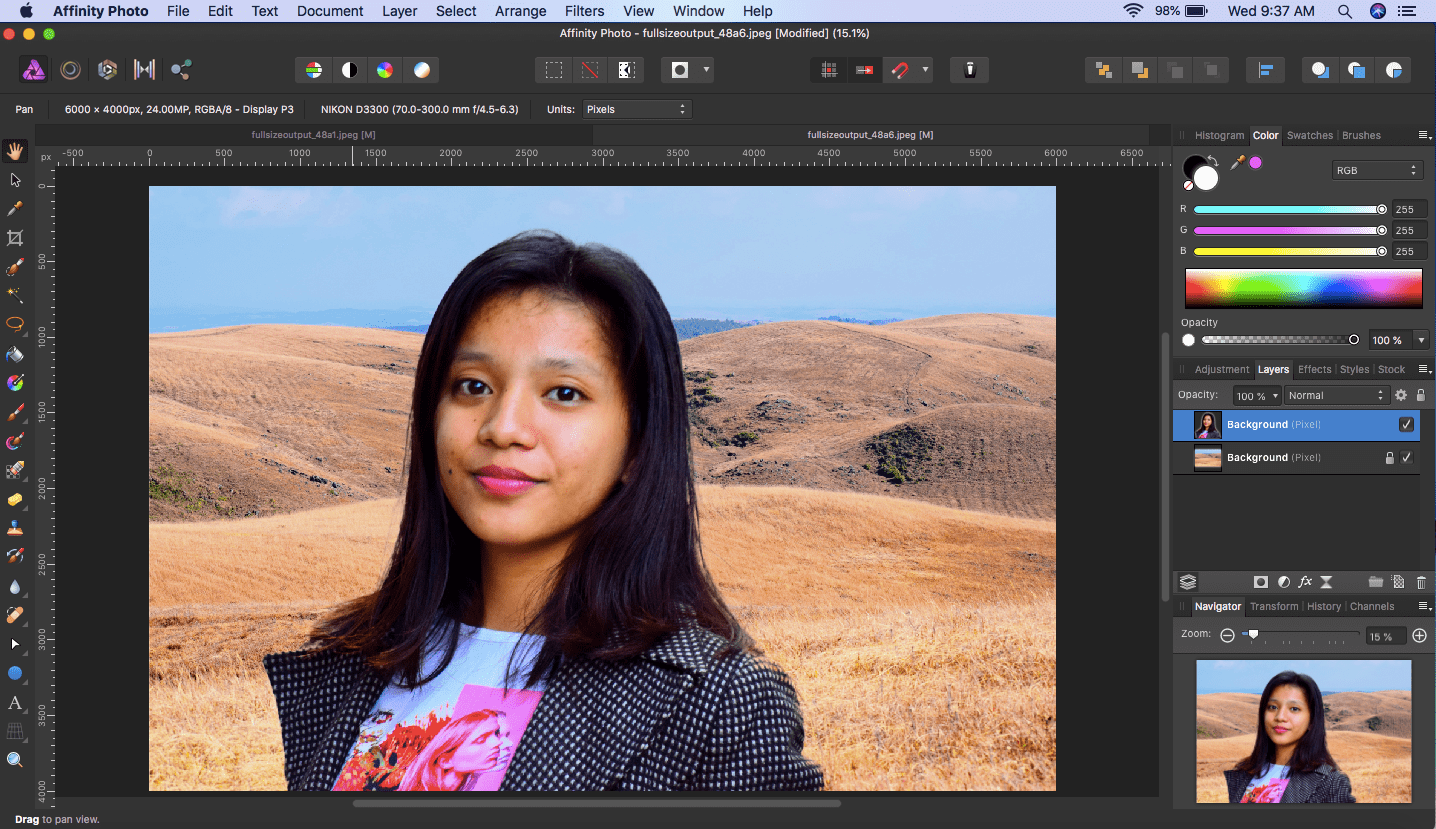 affinity photo selection pasted